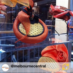 RG @melbournecentral: The Millinery Association of Australia's Pop Up Shop.…